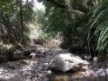 Trotters Creek