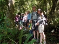Short walk Group on the Podocarp track