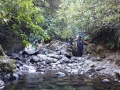 Nimrod Stream