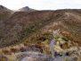 Silver Peaks 14-10-12