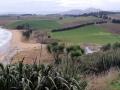 South coast line from Tavora Reserve