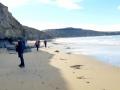 Coast Line to Bobbys Head