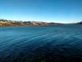 A long way to Dunedin
