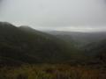 Rosella-Ridge